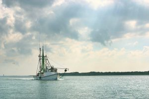 Shrimp Boat Returns from Fishing in the Gulf of Mexico
